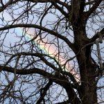 9 Regenbogen